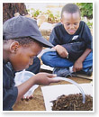 The Truworths Trekkers and Northern Rangers Enviro Clubs